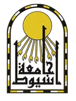 Assuit University - Bachelor of Science